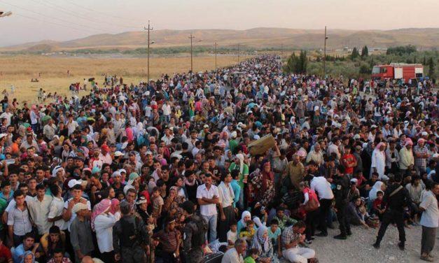 ۶۵ میلیون آواره، ۲۲ میلیون پناهنده