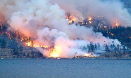 آتش سوزی گسترده در جنگل های بریتیش کلمبیا