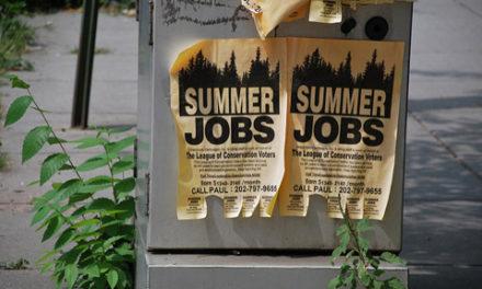 فرصت کار تابستانی در مرکز اسکاربورو
