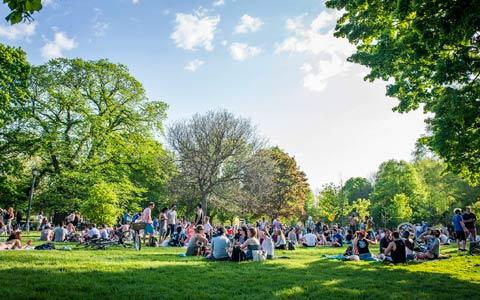برنامه ای برای بهبود وضعیت پارک های تورنتو