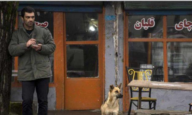 اعتراض سینمایی به یک ستم دیرپای مذهبی/ علی صدیقی