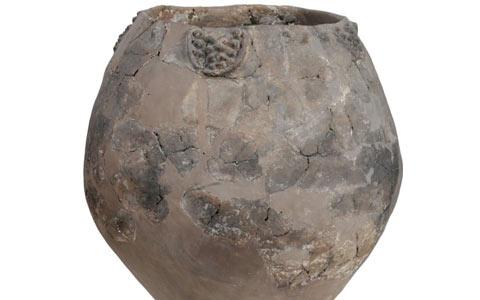 کشف قدیمی ترین مرکز ساخت شراب جهان