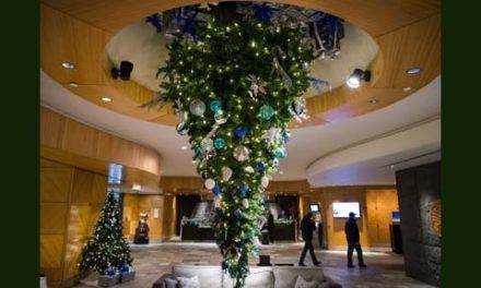 مد جدید و گران درخت کریسمس