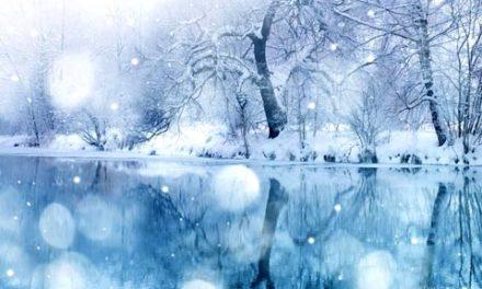 نقش میکروب ها در تولید باران و برف/دکترخسرو نیستانی