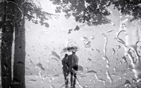 نم نم باران/محمود صفریان