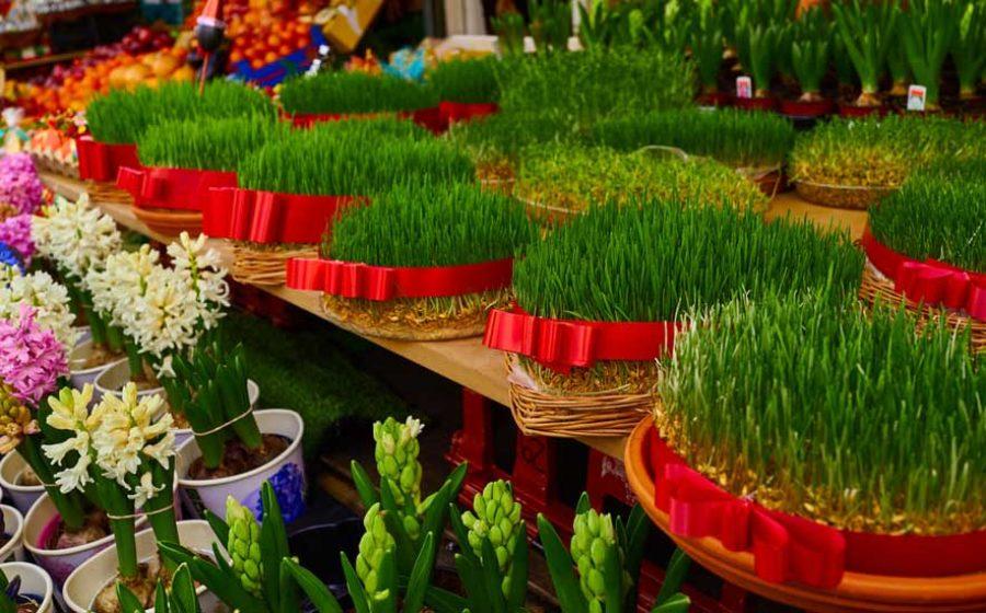sabzeh-Nowruz
