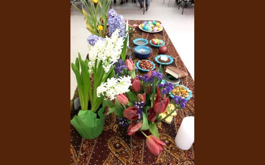 sara-sherkhani–Nowruz97-Long-Term-Care–5