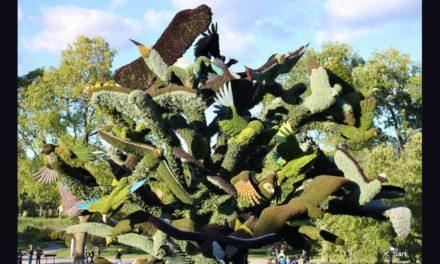 بازگشت نمایشگاه بین المللی موزائیک فرهنگی به پارک گاتینو در استان کبک