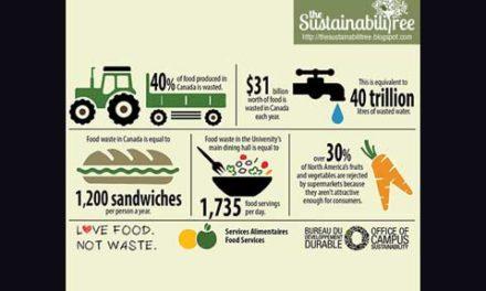 کانادایی ها از بزرگترین هدردهندگان غذا در جهان