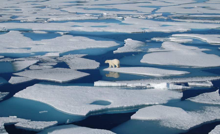 سرعت آب شدن یخ های قطب جنوب سه برابر پیش بینی های قبلی است