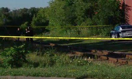 دستگیری مردی در پی گم شدن یک پسر ۵ ساله در برمپتون انتاریو