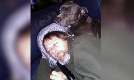 انتقال یک عفونت بسیار نادر از سگ، چهار دست و پای مردی را از او گرفت