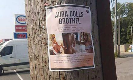 افتتاح اولین فاحشه خانه ی عروسکی در تورنتو