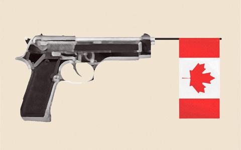 درخواست شهر مونترال برای ممنوعیت مالکیت خصوصی اسلحه