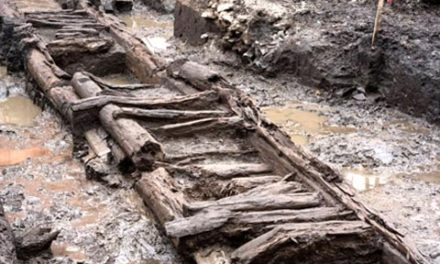 کشف حصاربندی چوبی ۳۲۵ ساله ی کبک سیتی