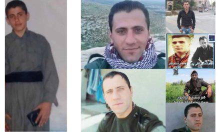 گفت وگوی شهروند با هه ژار علیپور برادر زندانی کرد هوشمند علیپور/فرح طاهری