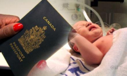 افزایش گردشگری به هدف تولد در کانادا