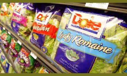 """جمع آوری سالادهای """" Smart Eat"""" به دلیل باکتری لیستریا"""