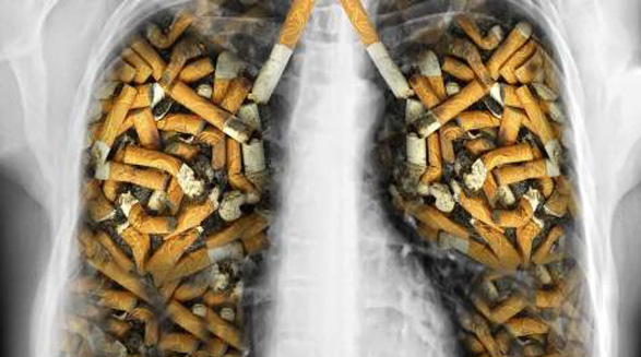 دخانیات/محمد رحیمیان