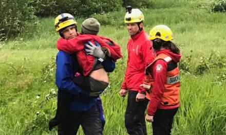 کودکانی که یک شنبه شب در جنگل گم شده بودند، پیدا شدند