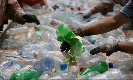 ممنوعیت استفاده از پلاستیک یک بار مصرف برای صنعت جنگلداری انتاریو بسیار سودمند است