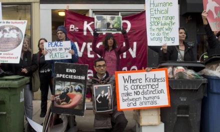 تظاهرات فعالان حقوق حیوانات به شیوه ی جدیدی در تورنتو برگزار شد