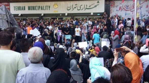 تداوم بازداشت جمعی از معترضان به سگ کشی در کهریزک